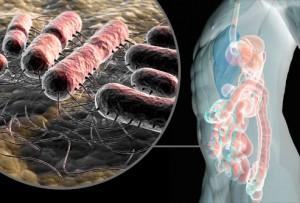 التهابات المسالك البولية البكتيرية