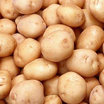 Photo of البطاطس يمكن أن تدخل فى حميتك لخسارة الوزن