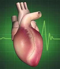 دكتور ماذا يعني لغط القلب؟
