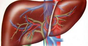 ما هي مسببات سرطان الكبد