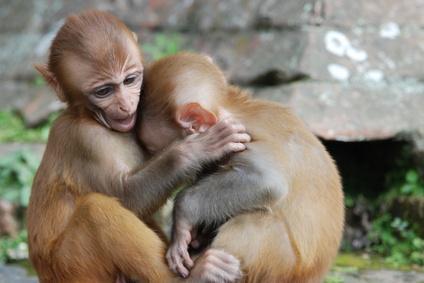 هرمون الحب يعزز العلاقة بين الام و الطفل و يساعد علي مزيد من العلاقات الاجتماعية