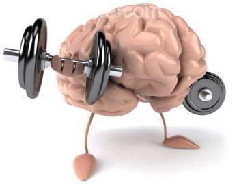 تقوية الذاكرة بطرق طبيعية