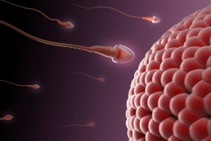 Photo of ما هو إنعدام الحيوانات المنوية عند الرجال Azoospermia ؟