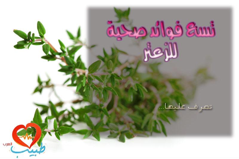 Photo of فوائد الزعتر الصحية