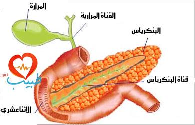 التهاب البنكرياس عند الأطفال Pediatric Pancreatitis