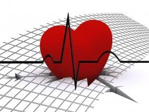 رسم القلب بالمجهود ( مخطط صدى القلب على الجهد )