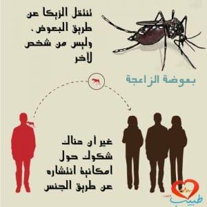 انتقال فيروس زيكا