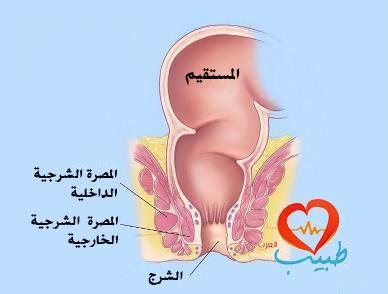 Photo of الطرق المختلفة في علاج البواسير وتخفيف آلامها