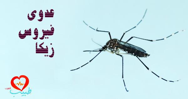 Photo of فيروس زيكا Zika Virus
