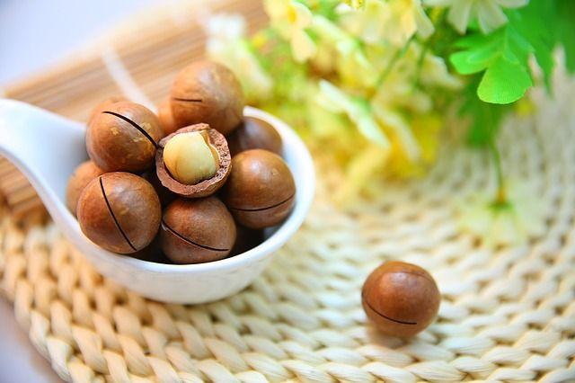 بروتين نباتي