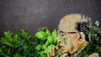 Photo of علاج مرض الزهايمر بالأعشاب